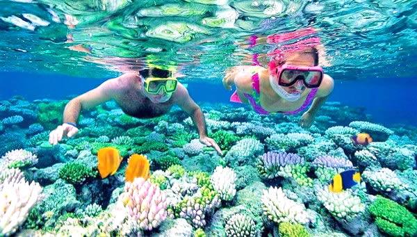 Kết quả hình ảnh cho snorkeling in maldives